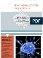 cerebro-120825120618-phpapp01