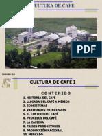 CULTURA DE CAFÉ I