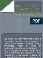 111herencias Recesiva y Dominante de Las Enfermedades Ligadas