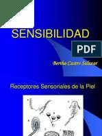 3. Sensibilidad Final