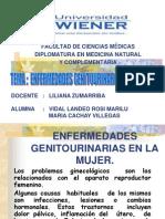 Enfermedades Genitourinarias en La Mujer (1)
