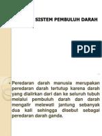 166454909 Sistem Sirkulasi Pembuluh Darah