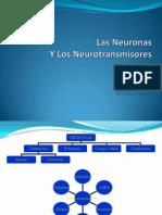 ppt 6 NeuronasyNeurotransmisores