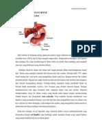 Anatomi Dan Fisiologi Hepar