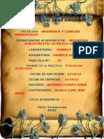 Practica 7 - Titulacion Acido Base Rue