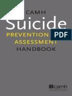 Sp Handbook Final Feb 2011