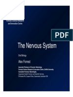 Introduction to Nervous System and Spinal Nerves
