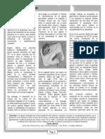 Revista2 Paginas. 2-7