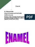 2- Enamel (Practical)