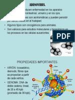 ADENOVIRUS.ppt