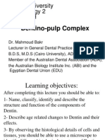 3- Dentino-pulp Complex (Mahmoud Bakr)