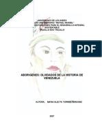 Aborígenes olvidados de la historia de Venezuela