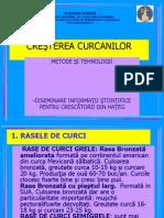 cresterea-curcanilor1.ppt