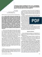 Volatile components in banana.pdf