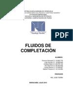 Fluidos de completacion (Versión de Ana)