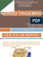 neuroanatomiatrigemino-130508183609-phpapp01