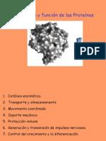 Estruct. proteinas 7