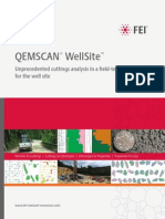 QEMSCAN WellSite Product Brochure v9