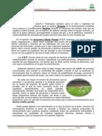 abp-110401215924-phpapp01