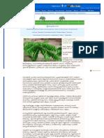 Malayalam Deepikaglobal Com-feature-Feature Details Aspx-newscode=7442-Feature c