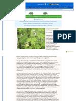 malayalam_deepikaglobal_com-feature-Feature_Details_aspx-newscode=7441-feature_c.pdf