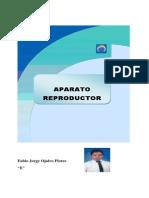 aparato reproductor