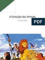 A Evoluc3a7c3a3o Dos Animais