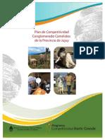 Jujuy Camelidos Pc Resumen (1)
