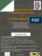 SEMINARIO UTILIZACION DE CARBOHIDRATOS Y AC. ORGANICOS.ppt