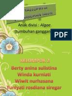 THALLOPHYTA (kelompok 2)