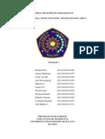 LAPORAN PRAKTIKUM ED-50.doc