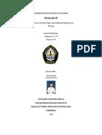 laporan autocad VINA ERNAWATI.pdf