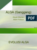 ALGA (Ganggang)