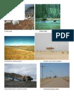 types of lands.doc