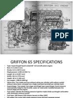 Griffon-65.pptx