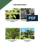 Flora Indemik Indonesia