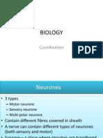 [Biology] Coordination.pptx