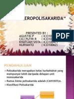 presentation HETEROPOLISAKARIDA.pptx