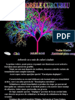 ARBORELE CURCUBEU.pdf