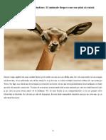 Atlasul creaturilor ciudate.pdf