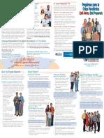 Manual supervivencia gripe pandémica