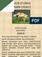ARISTA - JAMUR (FUNGI)-0.ppt