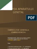 embriogeneza curs 1.ppt