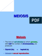 MEIOSIS.ppt