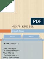 Presentasi-MITOSIS-dan-MEIOSIS.pptx