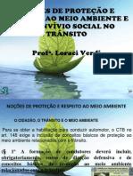 Noções de Proteção e Meio Ambiente power point19.03.2012
