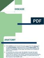 URETER DISEASE.pptx