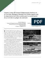 30.-HÁBITAT Y DIETA DEL HUEMUL EN EL CORREDOR BIOLÓGICO NEVADOS DE CHILLÁN-LAGUNA LAJA