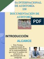 NORMA INTERNACIONAL DE AUDITORÍA0230