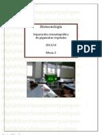 INFORME_CROMATOGRAFIA(2)